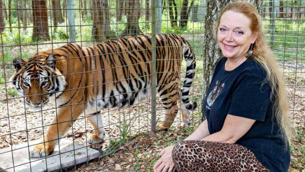 'Tiger King': Joe Exotic's Arch-Enemy Carole Baskin Gets Control Over His Oklahoma Zoo