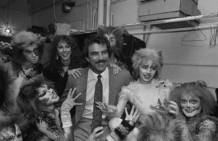 Tom Selleck Cats
